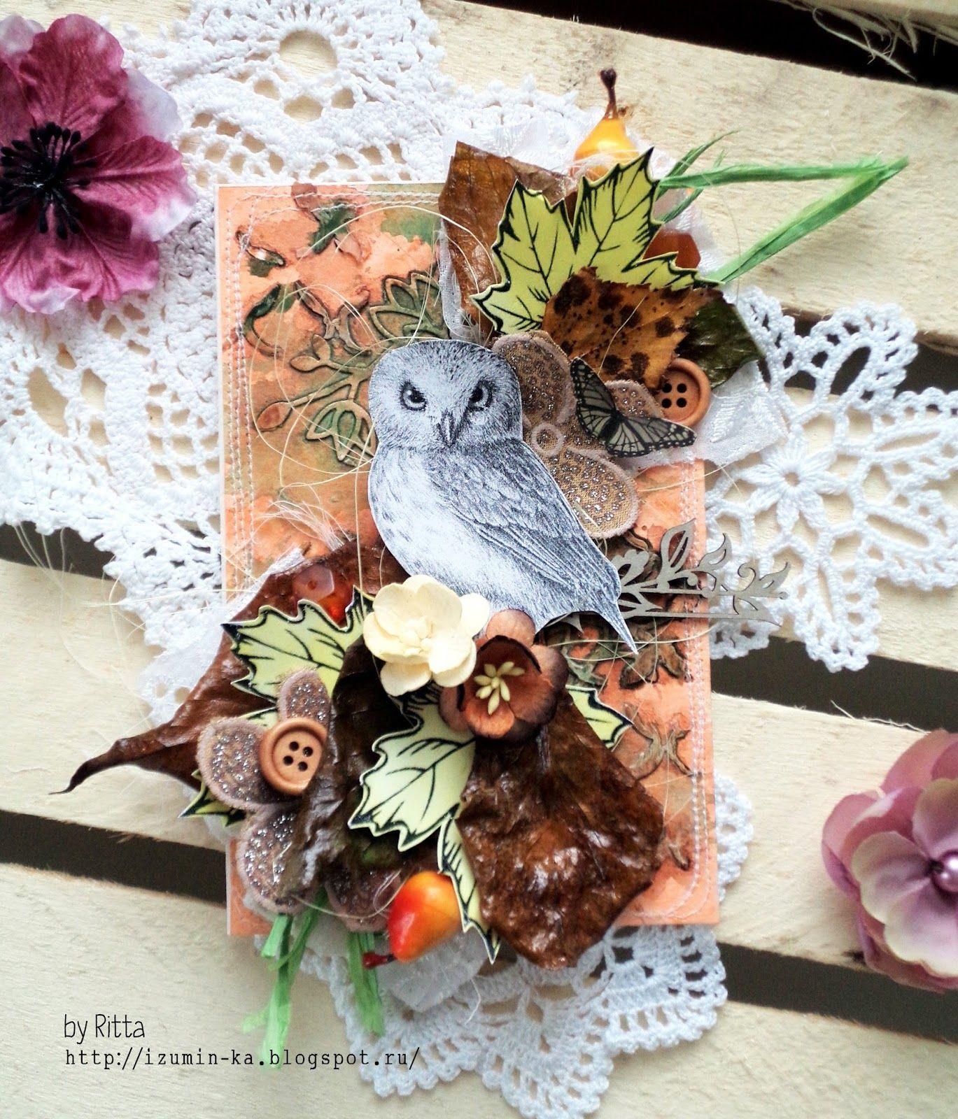 Скрап открытки с совой, приколами