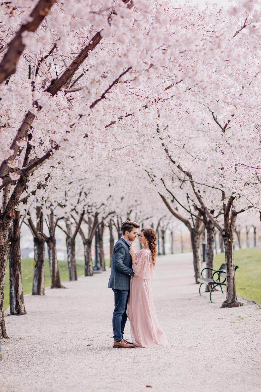 Utah State Capitol Cherry Blossoms Spring Engagement Salt Lake City Couples Engagement Photos Spring Engagement Photos Couple Photos