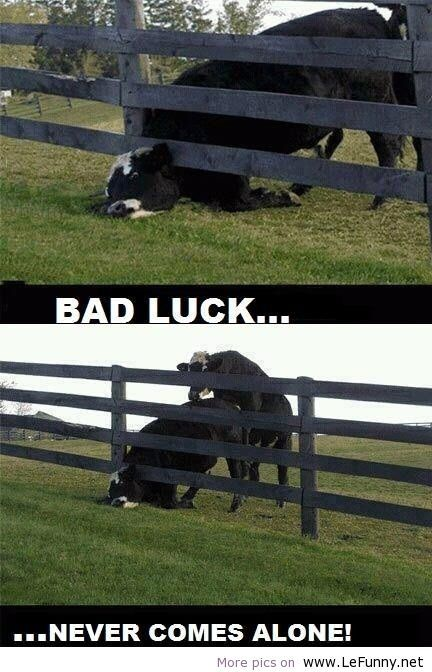 Funny bad luck LeFunny.net