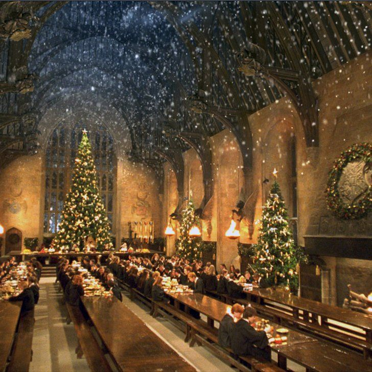 Attention Harry Potter Fans There Will Be A Christmas Dinner