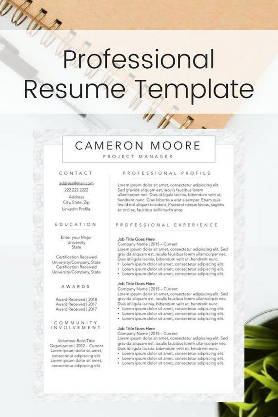 Modern Resume Template For New Professionals Eye Catching Resume