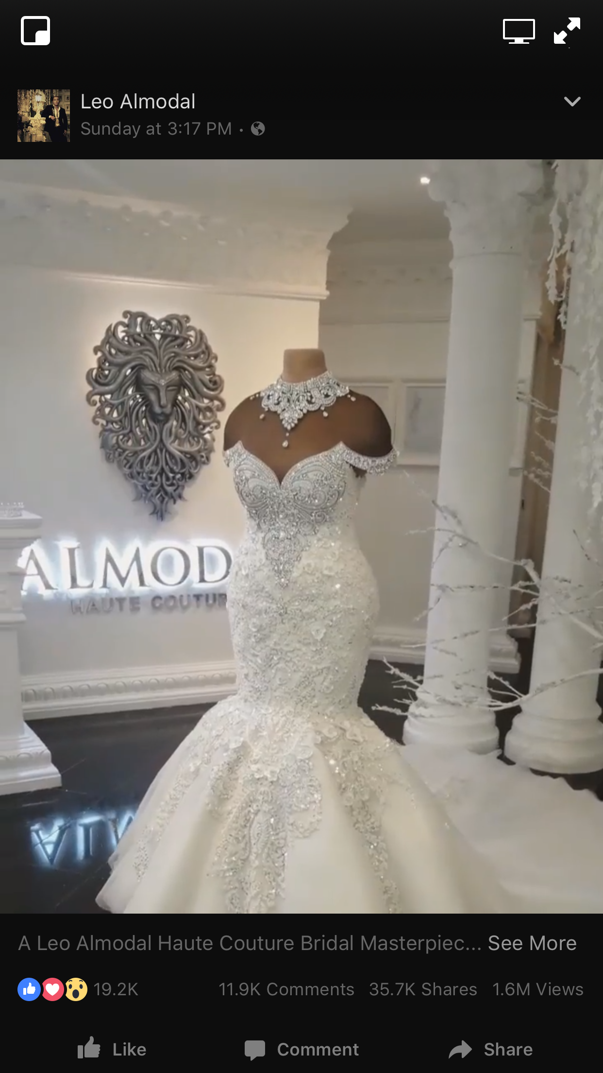 Leo Almodal Haute Couture Wedding Dress Absolutely Stunning
