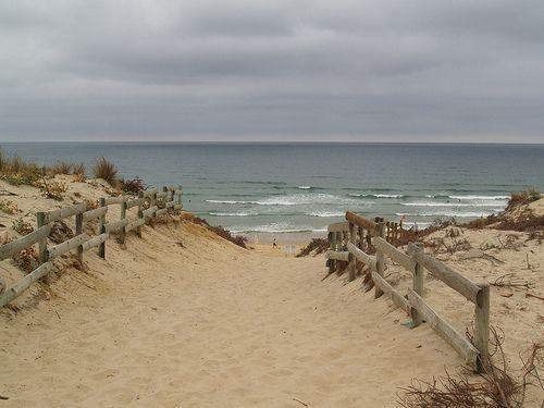 Pin By Marcia Frensley On Photography Beach Beach Life Sea Dream