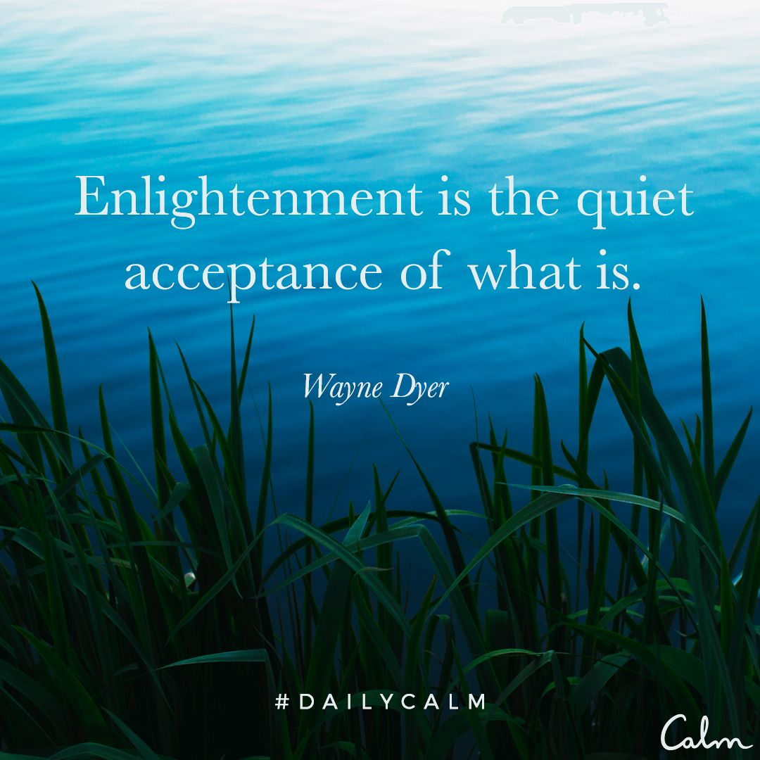 Experience Calm