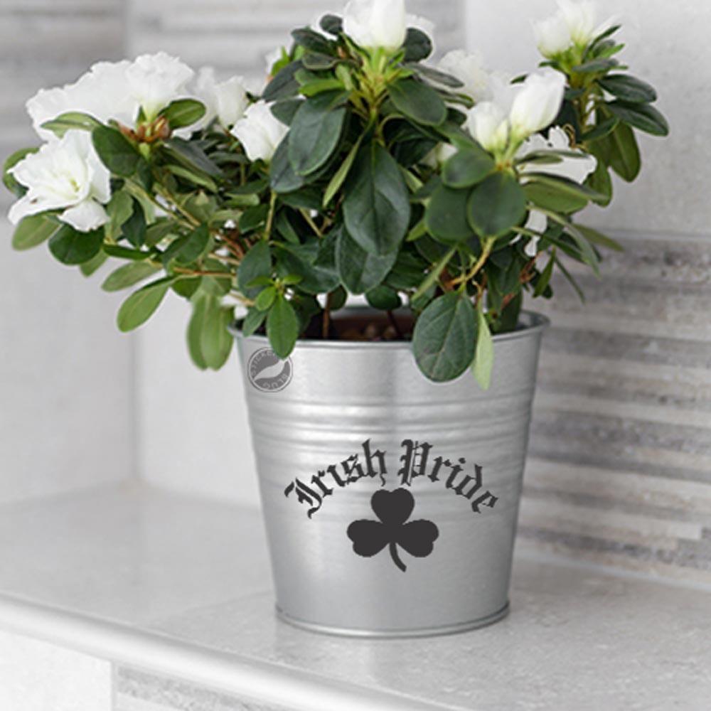 Irish Pride Four Leaf Clover Decal