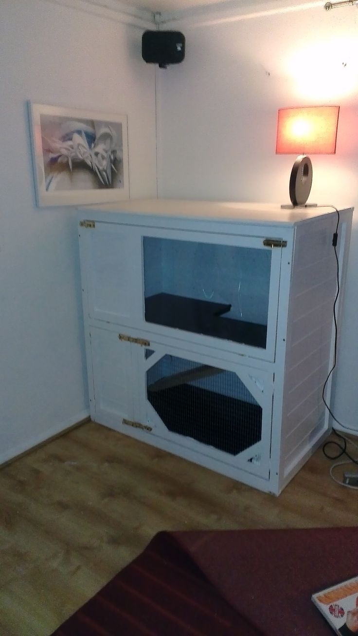 Awesome ideas for guinea pig hutch and cages guinea pig for Amazing rabbit cages