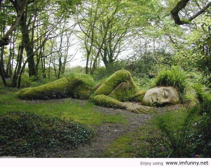 Fowey To Lost Gardens Of Heligan
