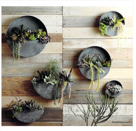 Circular Metal Wall Planters To Integrate The Round Saw Clock Into The Design Wall Planter Metal Wall Planters Hanging Plants