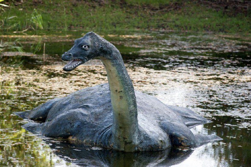 La Celebre Creature Du Monstre Du Loch Ness Ecosse Lochness Scotland Alainntours Lac Lake C Lm Tattevin Monstre Du Loch Ness Monstre Monstre Marin