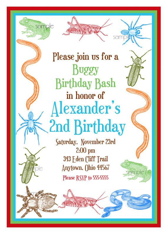 Bug Invitations Little Critters Bugs by LittlebeaneBoutique – Insect Birthday Invitations
