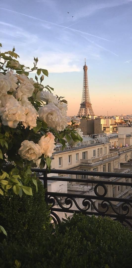 Photo of Des roses et les toits de Paris #eiffeltower Des roses et les toits de Paris