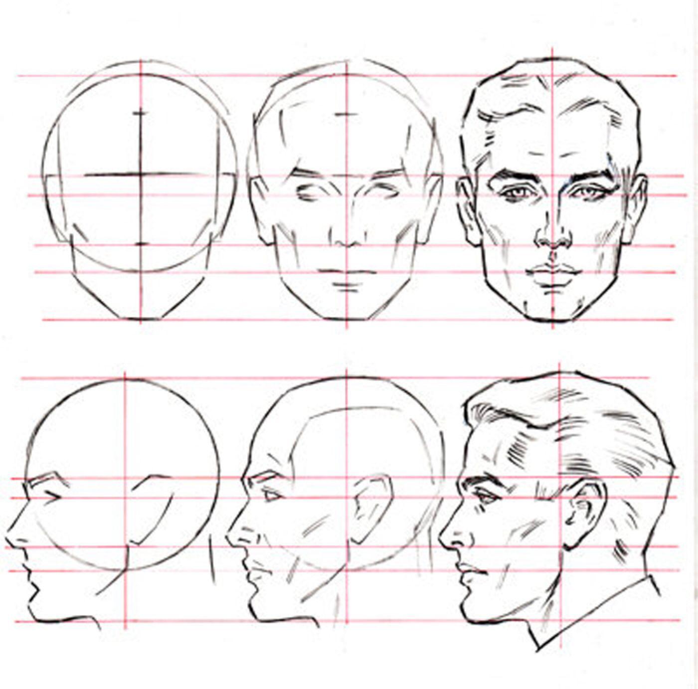 Male Head Anatomy Drawing Face Drawing Human Figure Drawing