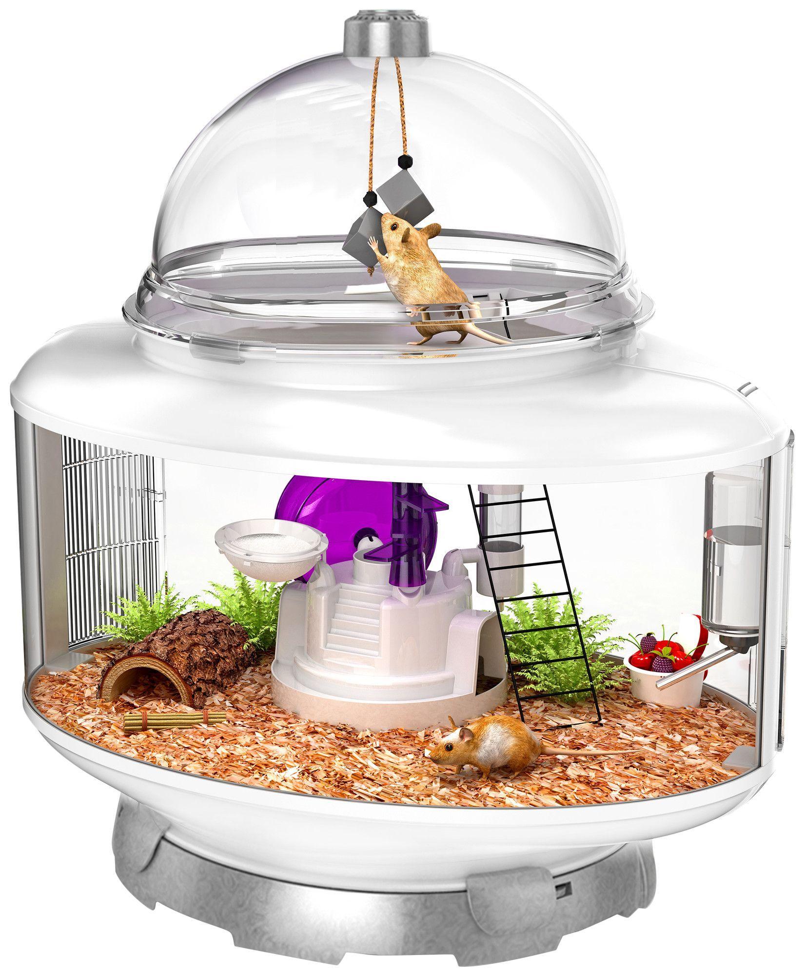 terrarium small animal habitat products pinterest erfindungen und tier. Black Bedroom Furniture Sets. Home Design Ideas