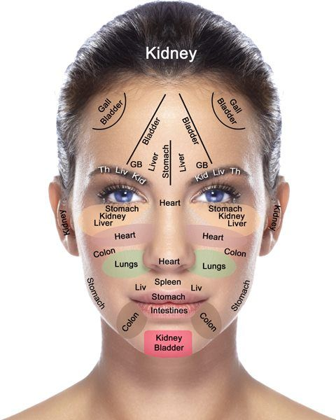 Face & Organ Map | Everything in your body is intricately connected ...