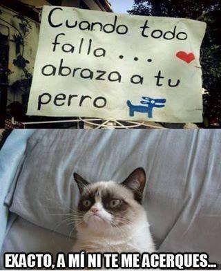 Imagenes De Memes En Espanol Http Www Fotosbonitaseincreibles Com Imagenes Memes Espanol 47 Memes Divertidos Meme Gato Memes Chistosisimos