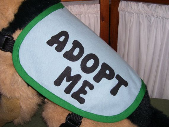 Dog Adopt Me Vest MEDIUM by loverescuedog on Etsy
