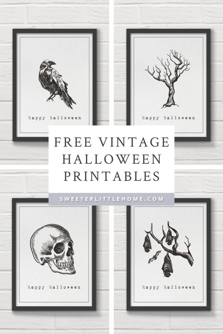 Free printable vintage Halloween wall art is part of Vintage halloween printables, Printable halloween art, Halloween wall art, Halloween prints, Halloween printables free, Cheap halloween decorations - Black and white free printable vintage Halloween wall art prints!
