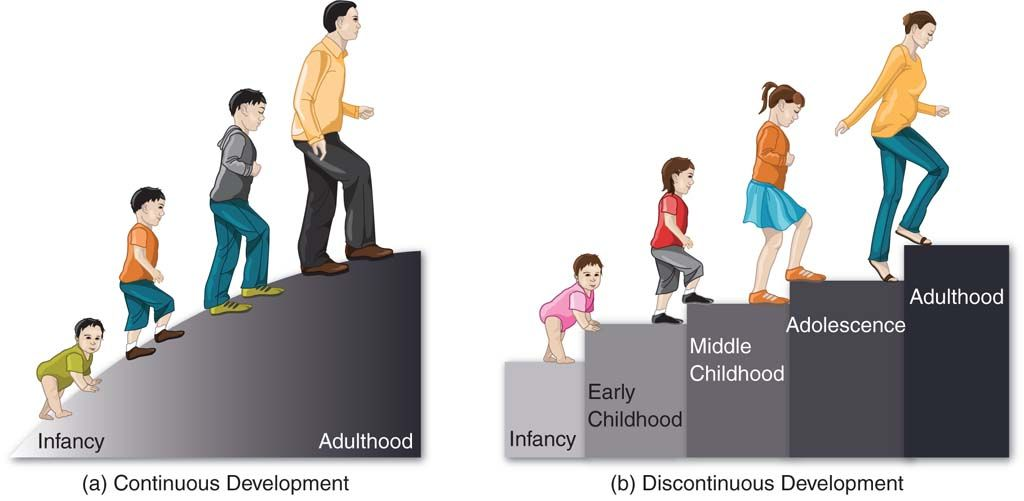 Image result for development from infancy to adulthood