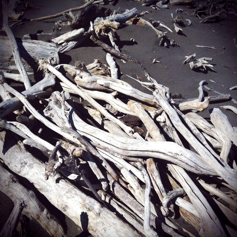 Driftwood - photobasket by @Clair O'Neill Miller - Instagram