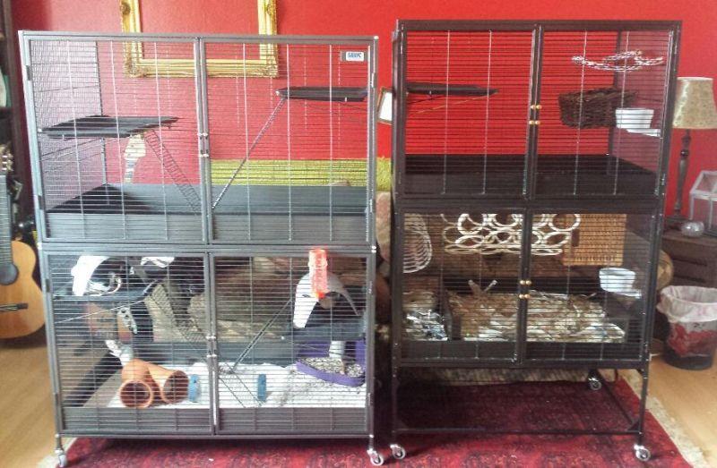 Savic Suite Royal Xl Savic Royal Suite 95 Pet Rat Cages Rat Cage Small Pets