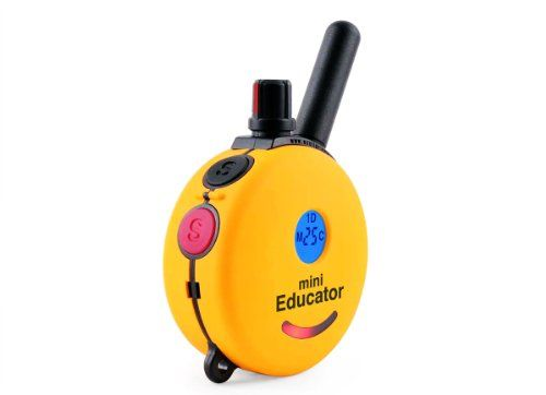 Educator ET-300TS Mini E-Collar 1/2 Mile Remote Dog Trainer Pet Supplies Near Me