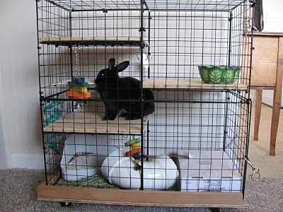 Homemade bunny cage diy crafts that i love pinterest for Homemade bunny houses