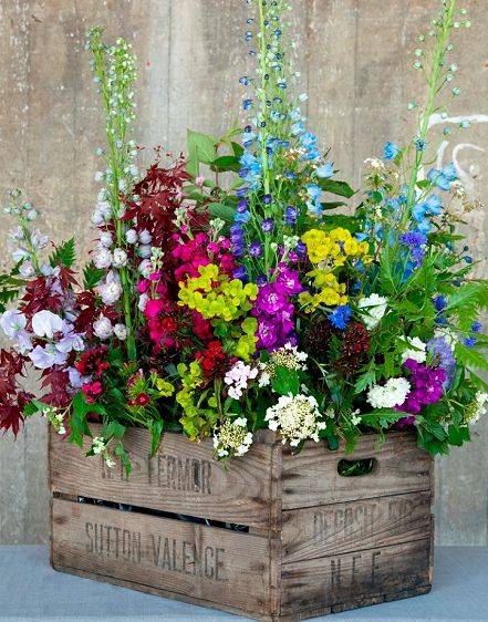 Amazing Diy Outdoor Planter Ideas To Make Your Garden Wonderful