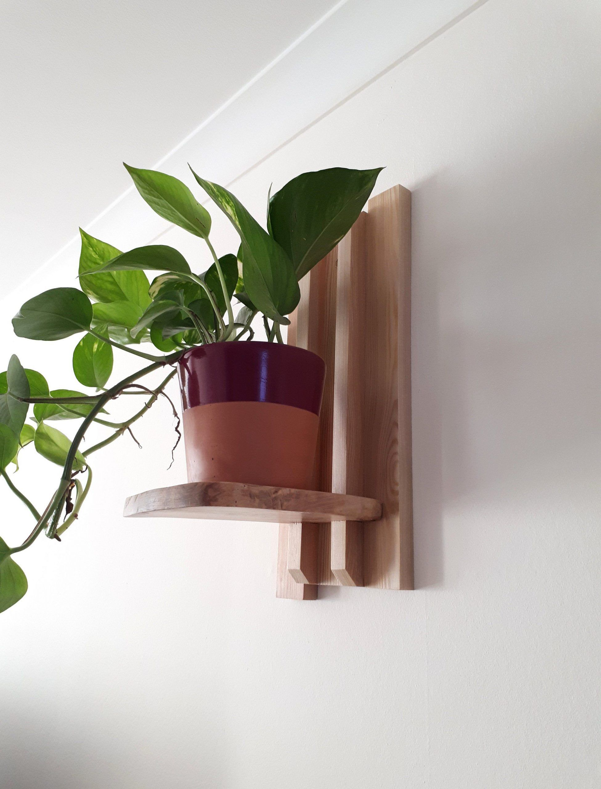 Wall Planter Indoor Made Of Wood Hanging Plant Pot Planter Shelf Wall Mounted Planter Lake House In 2020 Wall Planters Indoor Wall Mounted Planters Hanging Plants