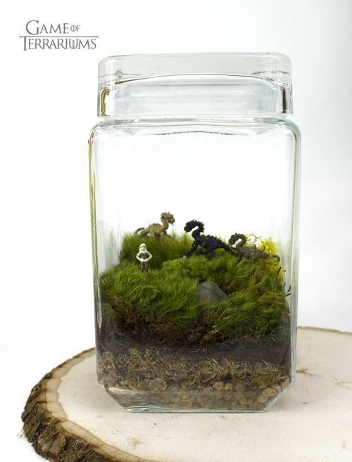 Pop Culture Terrariums Game Of Terrariums Fandom Geekery