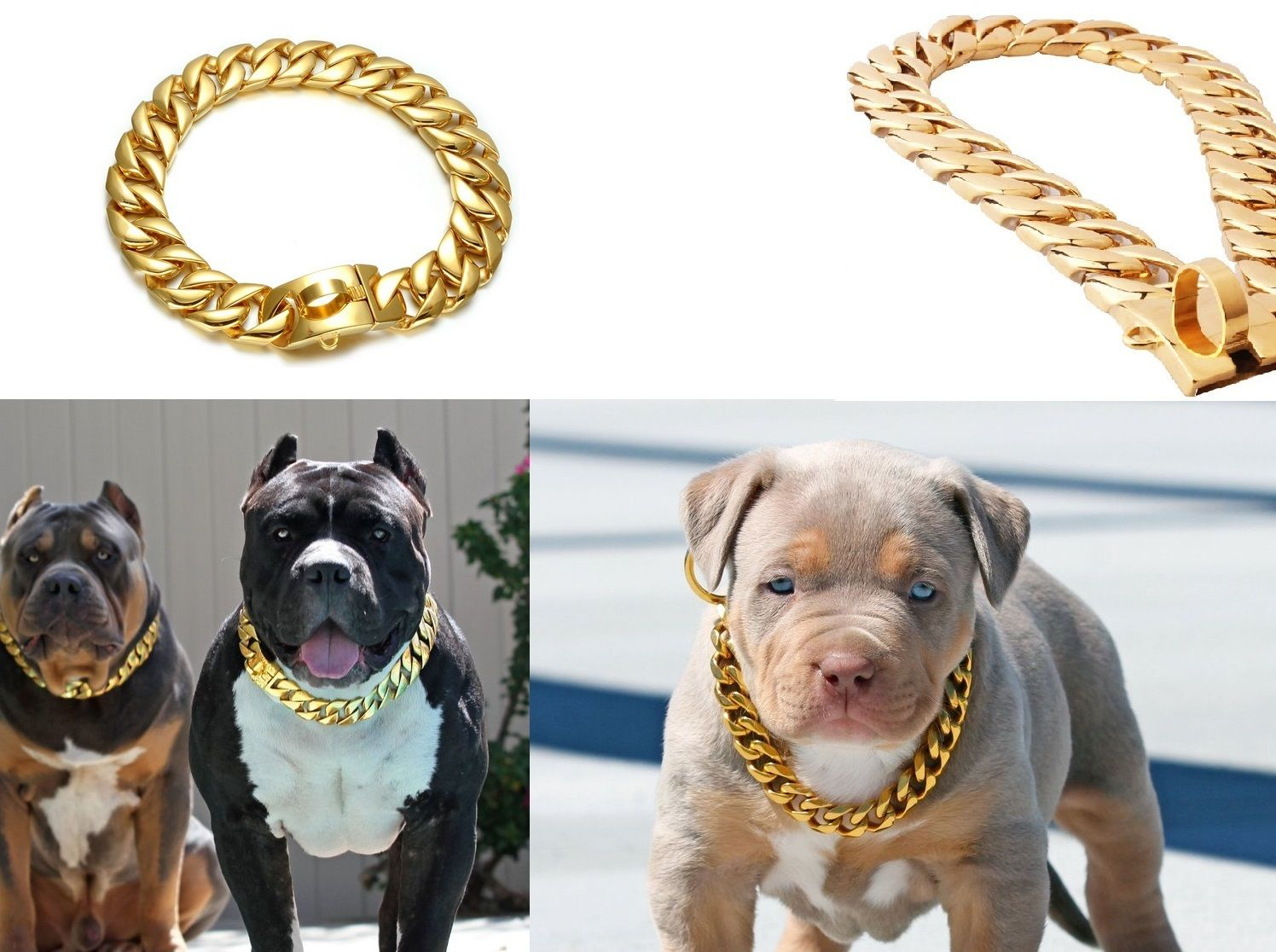 Cuban dog collar chain dogs big dogs pet collars