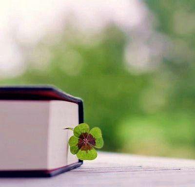 ربيع.. Writing prompts, St patricks day, Beloved book