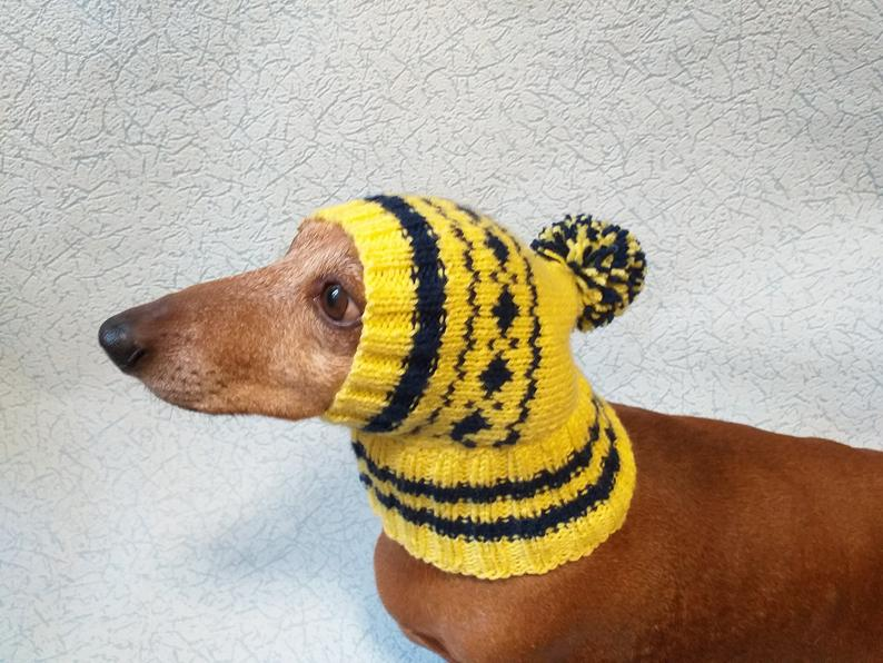 Winter Knitted Hat For Small Dog Hat For Dogs Pet Clothes Winter Hat For Dog Handmade Hat Hat For Dachshund Knitted Hat Gift Hat Dog Hat Pet Clothes Winter Knit Hats