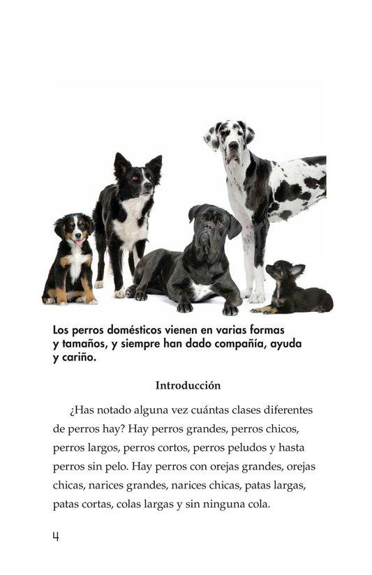 Razas De Perros Kids A Z Razas De Perros Perros Perro Sin Pelo