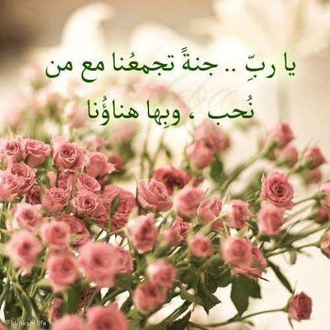 يارب جنة تجمعنا مع من نحب Pretty Flowers Beautiful Flowers Flowers