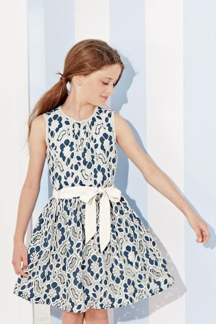 3f2d16e0e4f3 Buy Blue Lace Dress (3-16yrs) from the Next UK online shop