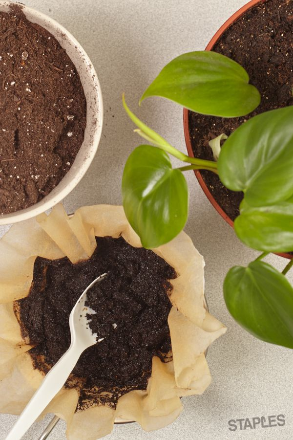 Make More Happen Uses For Coffee Grounds Coffee Supplies Food