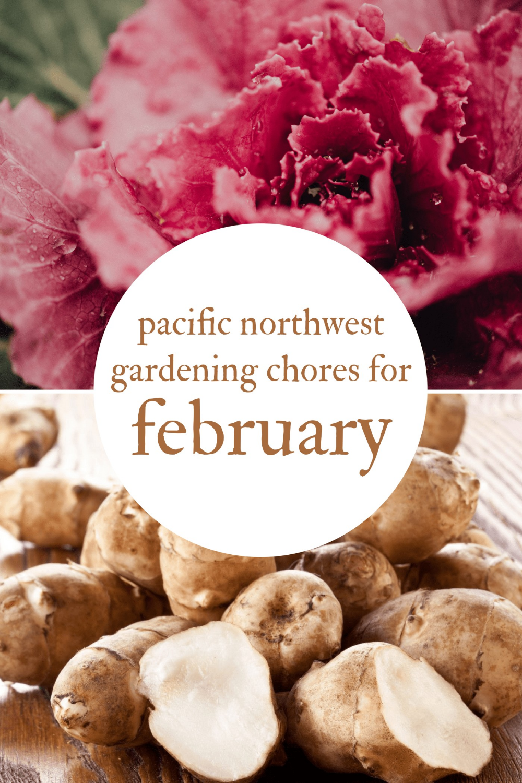 February Gardening Chores For The Pacific Northwest Northwest