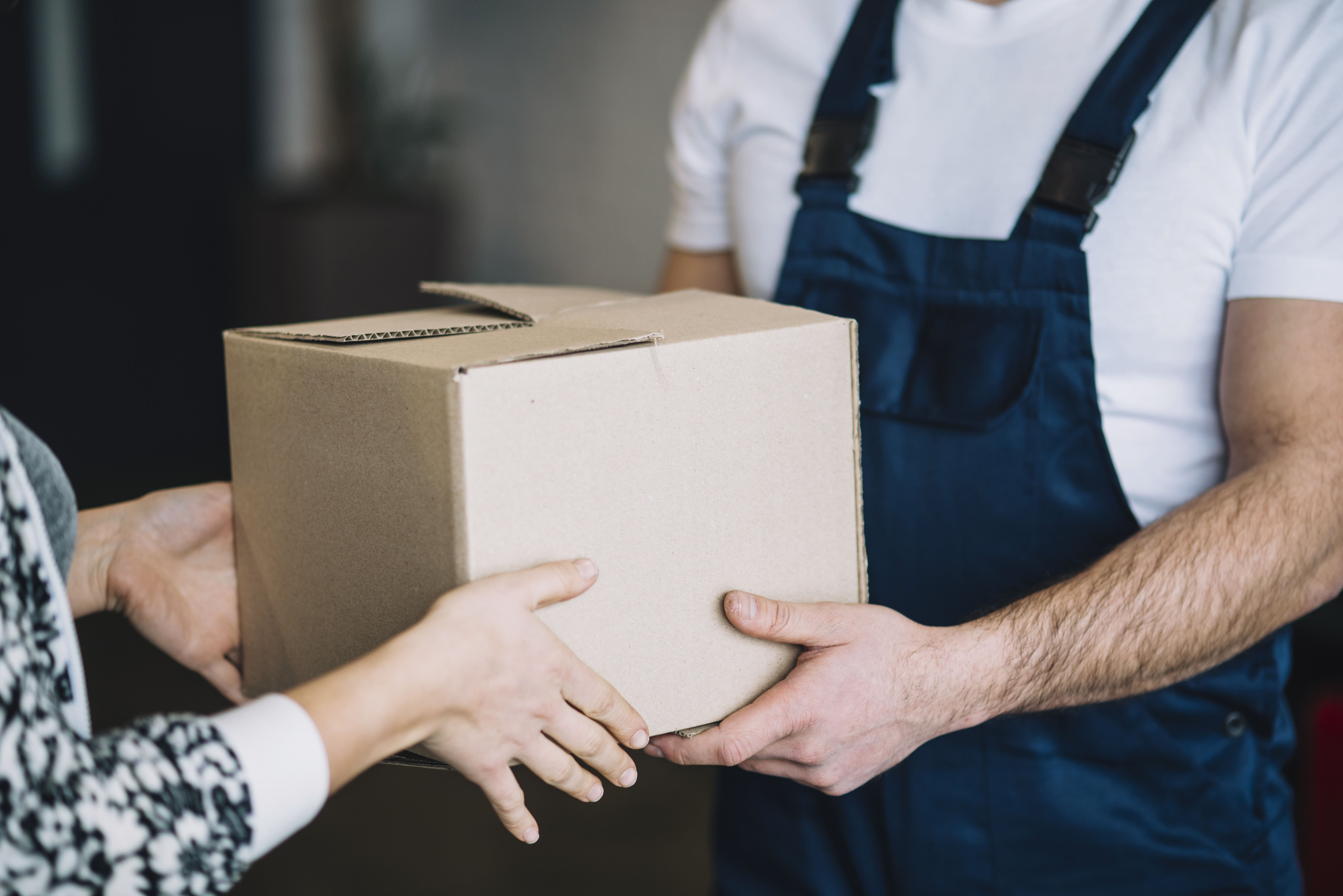 International Courier Services for Food Items Courier