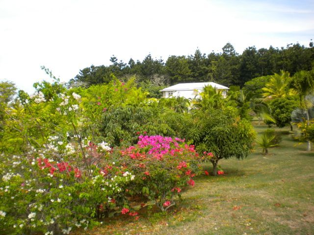 Maison mauricienne