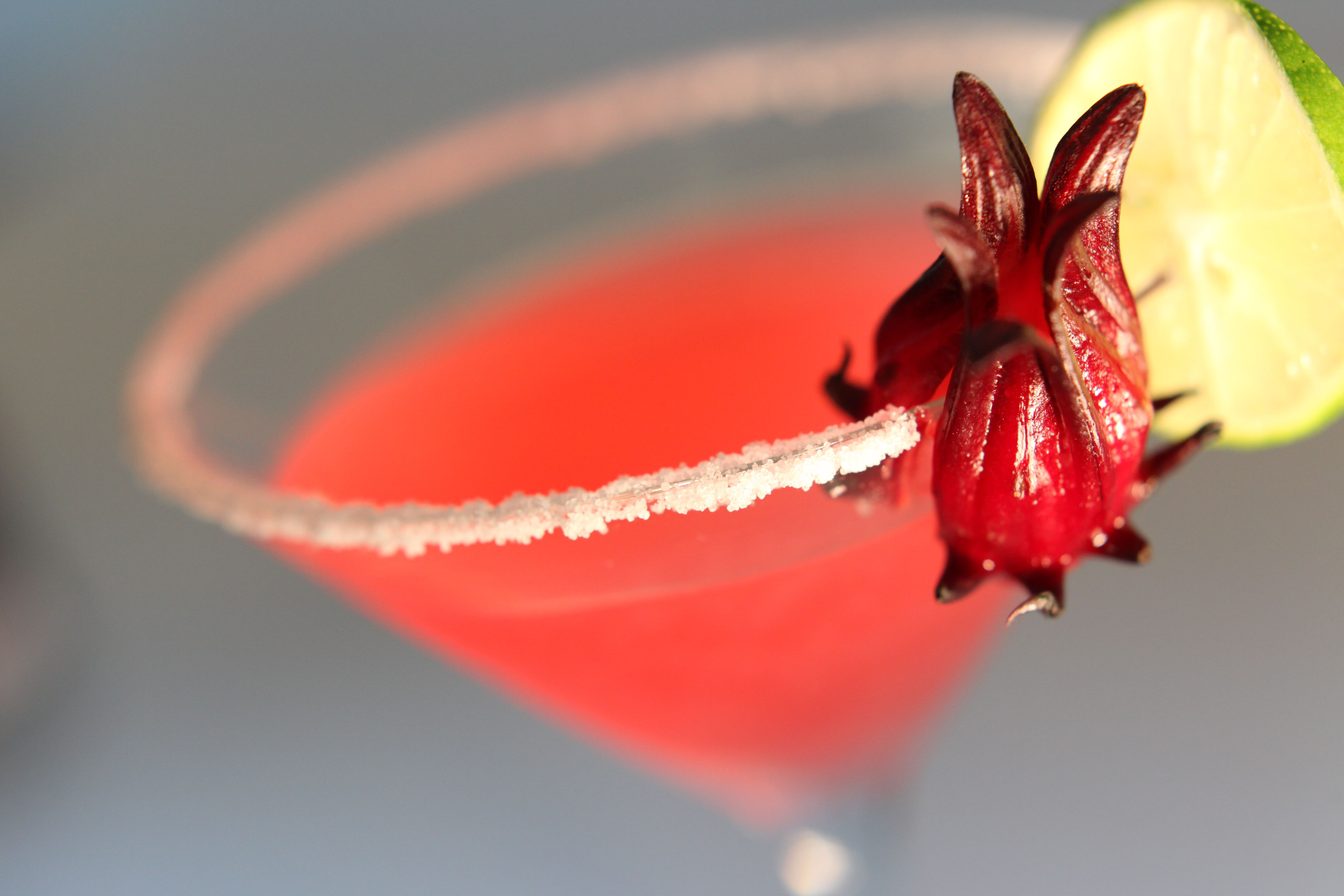 Cocktail Photo Using Our Rosella flower