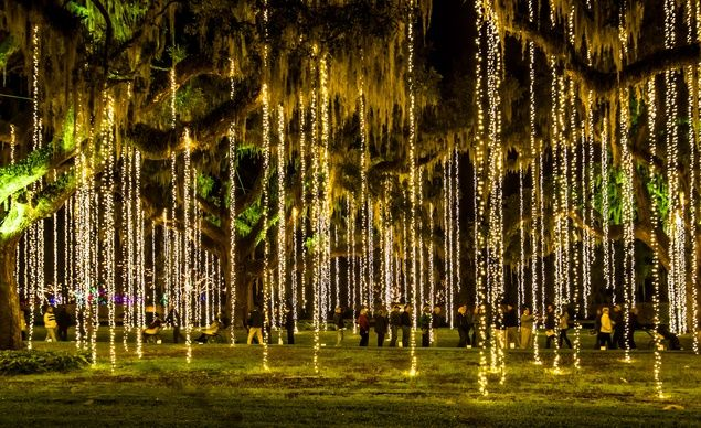 12 Holiday Festivals Worth Traveling To | Budget T