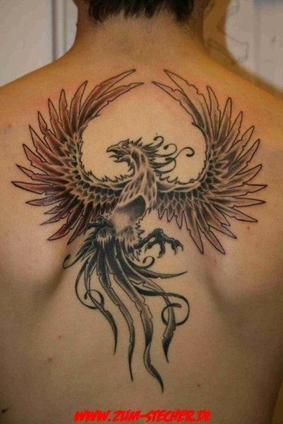 Nice Black And White Phoenix Phoenix Black Tattoo Skin Back