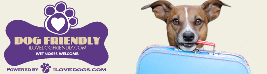 Buying Guides Dog Friends Dog Friendly Stores Dog Friendly Beach