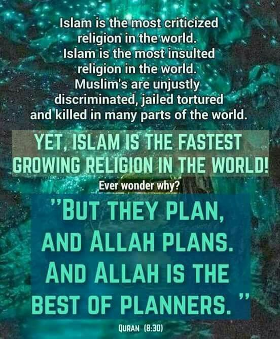 YET ISLAM IS THE FASTEST GROWING RELIGION IN THE WORLD - The fastest growing religion