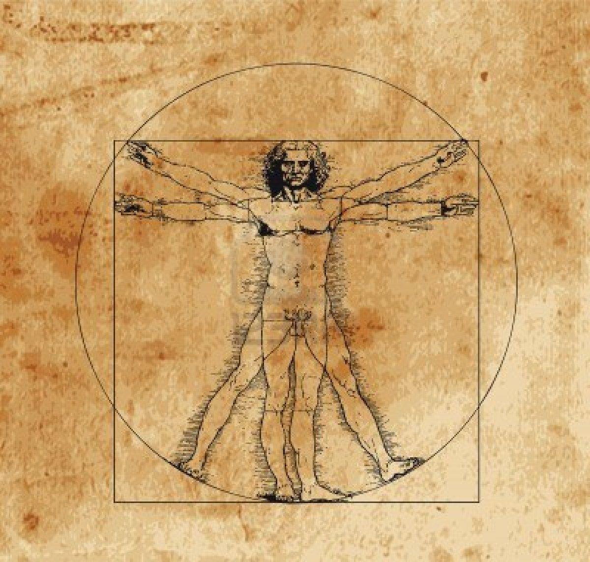l 39 homme de vitruve codex leonard de vinci renaissance etude des proportions recherche de. Black Bedroom Furniture Sets. Home Design Ideas