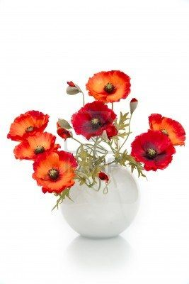 The image of a bouquet of artificial poppies in a vase isolated on the image of a bouquet of artificial poppies in a vase isolated poppy bouquetflower arrangementfloral mightylinksfo