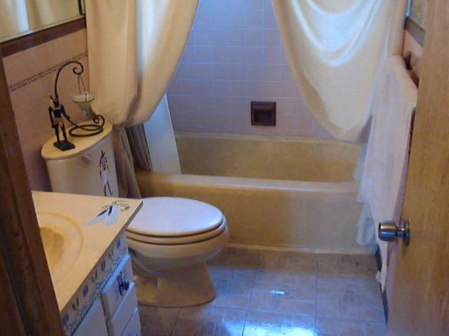 Egyptian Themed Bathroom