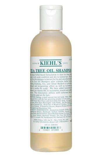 Kiehl S Tea Tree Oil Shampoo Nordstrom Hairstyle Tea Tree Oil