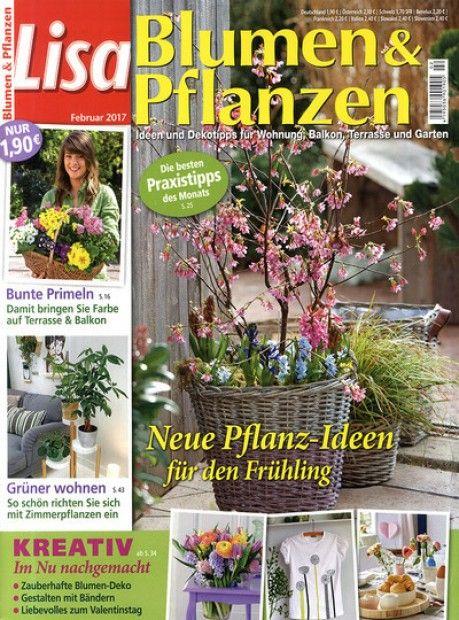 Kreative Pflanzenideen um Haus und Garten zu dekorieren Tolle - haus und garten zeitschrift