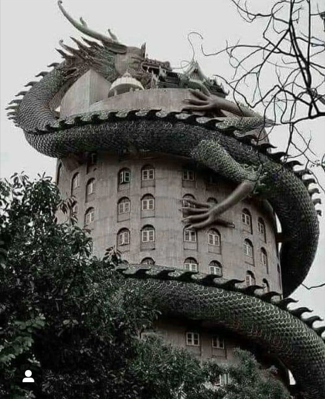 Dragon House Image By Michael Hathaway On Cool Stuff